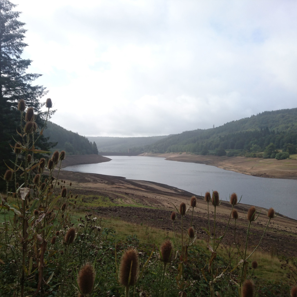 Derwent Revoir in the summer drought 2018