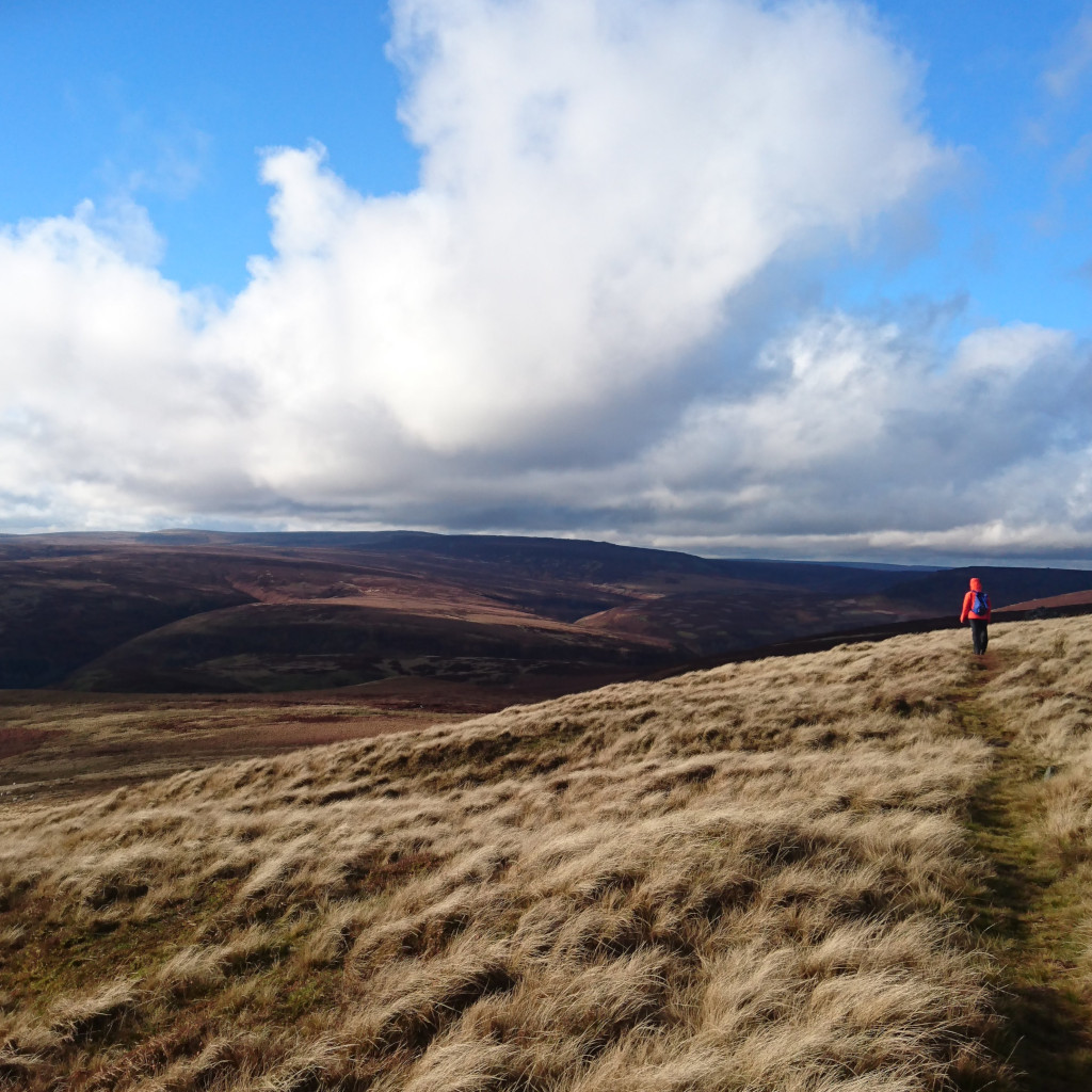 Moody landscape across Howden Moor, Peak District with figure in background