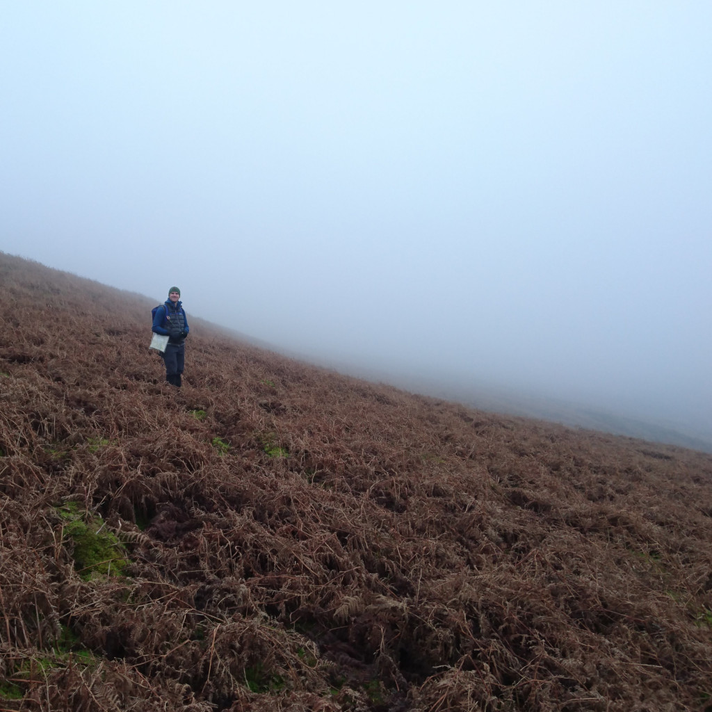 A foggy moorland slope with Kial navigating