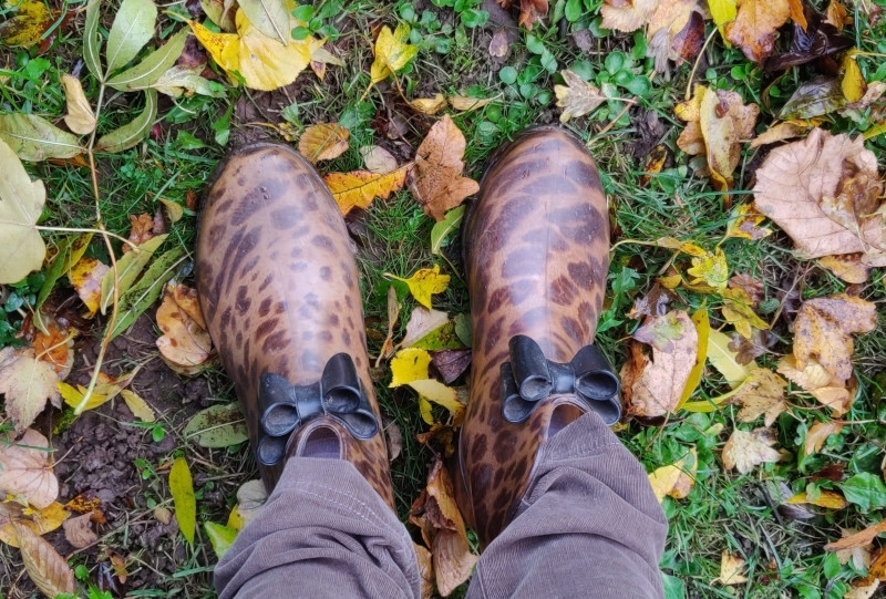 Short leopard print print wellies with black bow