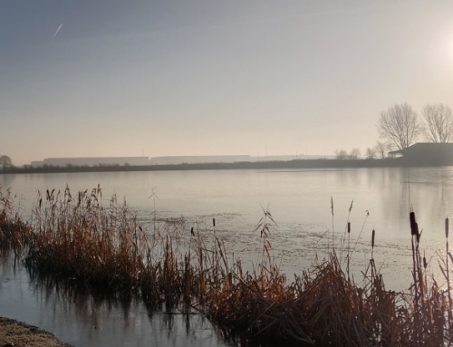 Walk around Balby, Loversall and iPort Lakes, Doncaster